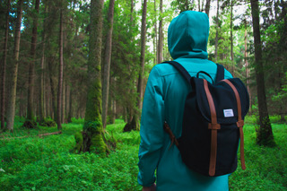 man with hoody walking towards a forrest